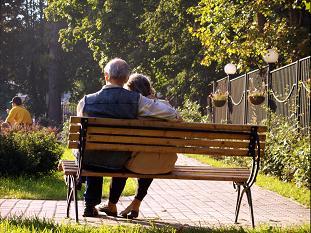 Alzheimer's Dementia and Other Neurodegenerative Diseases